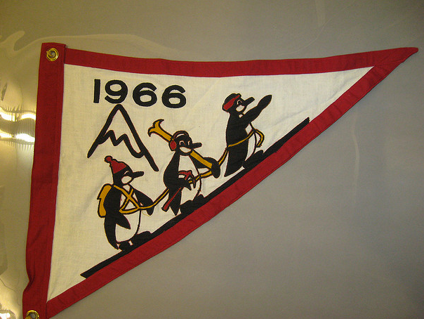 Expedition flag